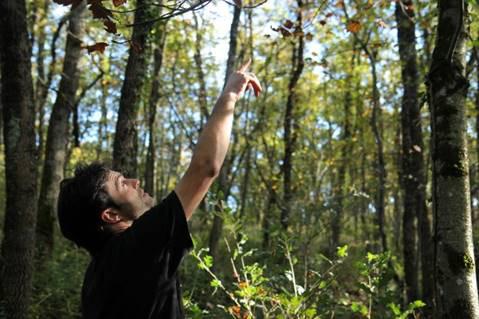 """Formation - Chantier """"Comment gérer et valoriser sa forêt de manière durable par une sylviculture douce"""""""