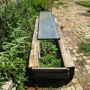 Semis au jardin partagé de Pierrefeu Terres de Partage